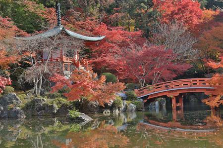 momiji: Daigoji Temple in Autumn, Kyoto, Japan