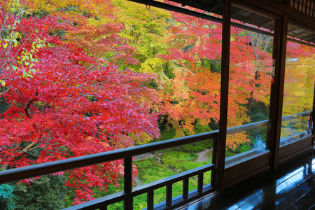 Temple in Kyoto, Japan during the fall season photo