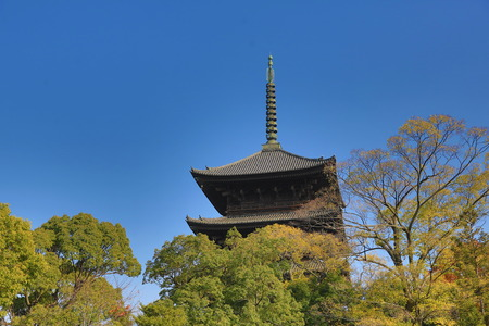 The wooden tower of To-ji Temple