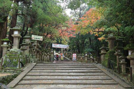 shinto: Lanterns in Kasuga, a major Shinto shrine in Nara, Japan Editorial