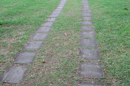 hostas: stone path