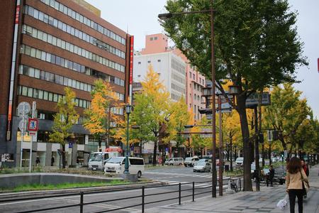 Mido-suj streeti of fall season at japan