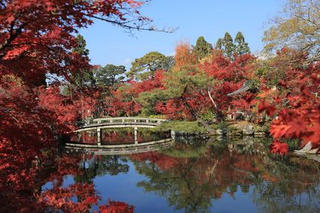 hojo: Japanese garden of Eikando Zenrinji temple in autumn, Kyoto, Japan.