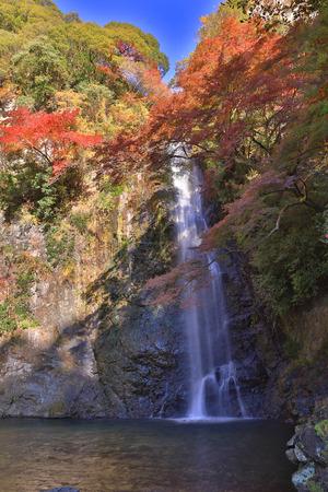 quasi: Minoh waterfall in autumn, Osaka, Japan Stock Photo