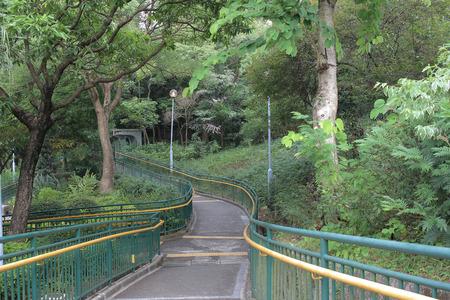 to woo: Choi Sai Woo Park, hong kong island Stock Photo