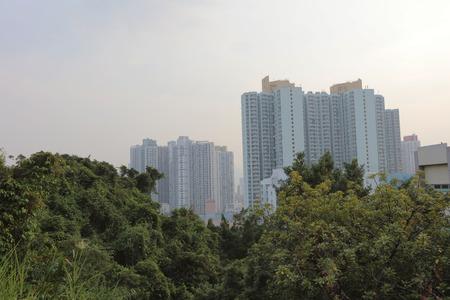 public house: the  public house hong kong Estate kowloon