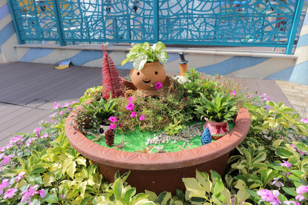 flower bed: the  Flower bed at the ocean park