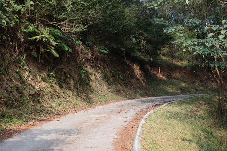 foot path: alley with small foot path at Maclehose Trail Sec. 9