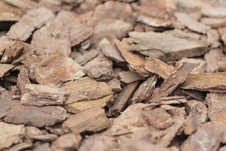 biomasa: Las astillas de madera para una combustión de biomasa
