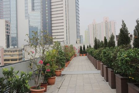 lath in modern: The small garden on the roof terrace at hk