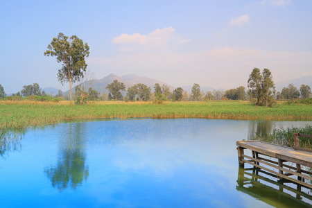 nam: the wetland of NAM SANG WAI 2016
