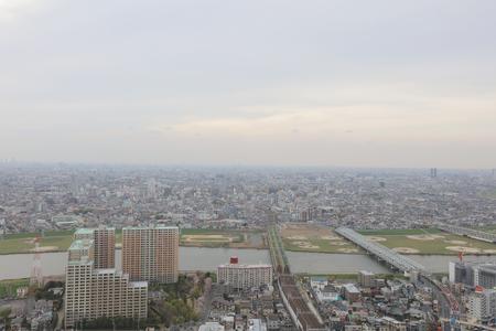 historical building: Ichikawa historical building overlooks the Ichikawa area