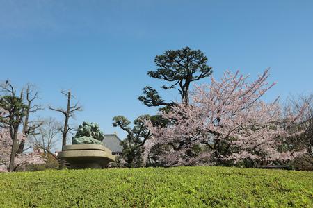 reincarnation: Asakusa Denpoin Gardens  Tokyo's Hidden Gem