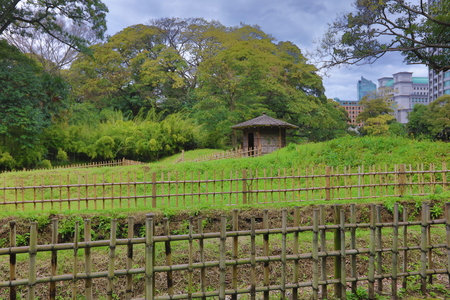 duck hunting: as duck hunting place of Shogun Tokugawa family in the 17th century.