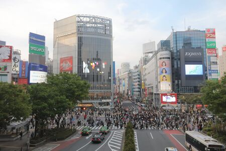 hectic life: the style of  Shibuya pedestrian crossing at 2016
