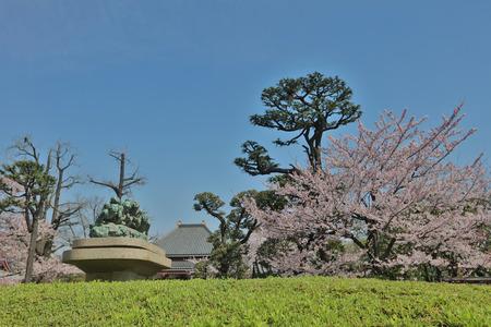 recite: Asakusa Denpoin Gardens  Tokyo's Hidden Gem