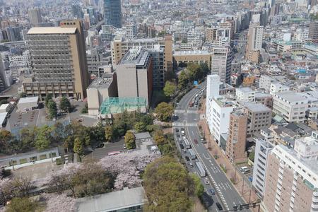 high angles: Tokyo city skyline. Bunkyo ward aerial view. at 2016