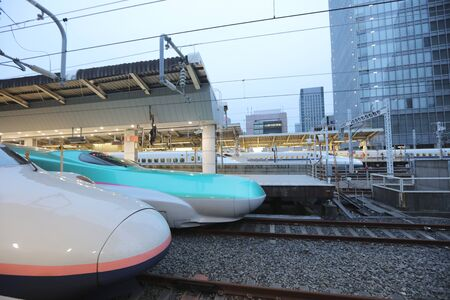 the series: the Green E5 series and white E2 series bullet trains