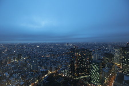 tallest bridge: Tokyo city, good view point at shinjuku district. 2016