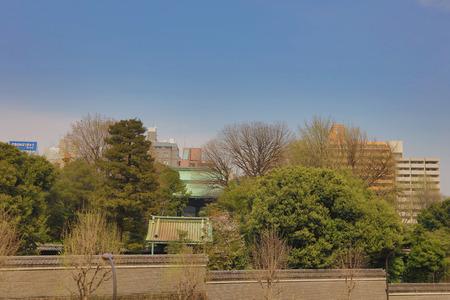 neighbourhood: This Temple located in the Yushima neighbourhood of Tokyo