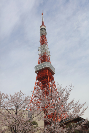 overlook: the Overlook of the Tokyo Tower and Tokyo city