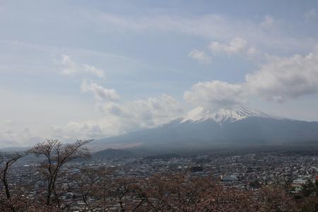 saiko: Fuji Mountain is one of the most famous tourist