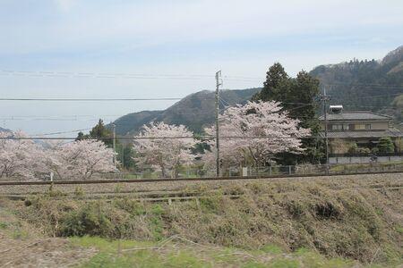 raod: the view from train , YAMANASHI japan