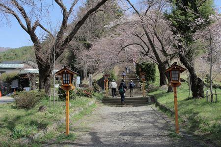 sengen: Walkway to Chureito Pagoda, Arakura Sengen Shrine in Japan Editorial