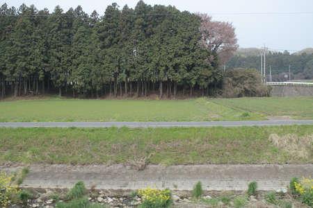 feild: LANDSCAPE by train Nikko Kinugawa LINE Stock Photo