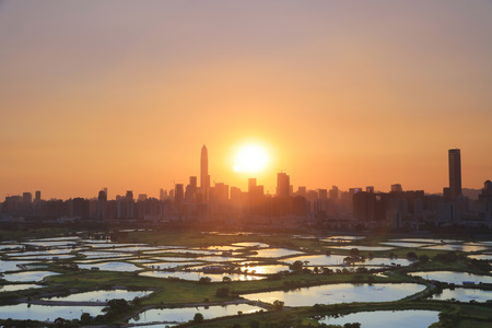 HK Countryside sunset, rice field modern office buildings