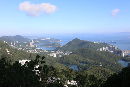 residential tree service: the peak view of Southern District.hk
