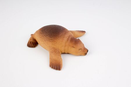 sea lion: the fun of the figure Sea Lion Stock Photo