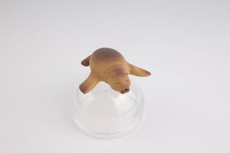 sea lion: the  plastic sea lion, toy with figure Stock Photo