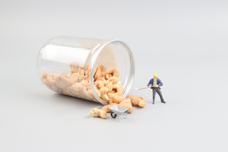figurine: the Tiny toy mining nuts with bottle
