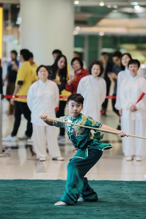aikado: the Wu shu Demonstration at hk 2017