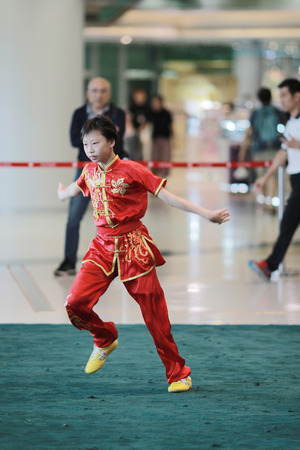 the Wu shu Demonstration at hk 2017