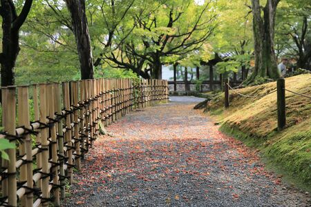 prefecture: a garden of  Tofukuji Temple, kyoto Stock Photo