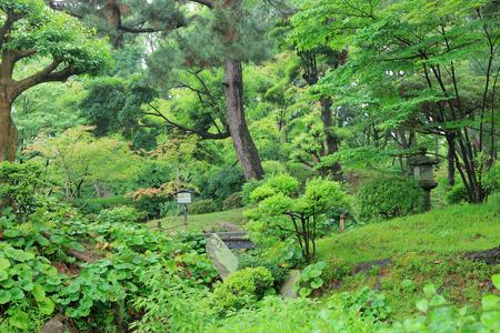 a pleasant Japanese style garden in Hiroshima, Japan.
