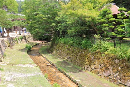 the river at Miyajima island  2016