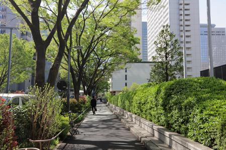paso de peatones: cruzar la calle en Shinjuku en 2016