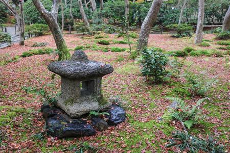 maple tree fall season, Gio ji Temple Editorial