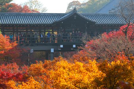 autumn foliage in Tofuku ji Temple in Kyoto Stock Photo