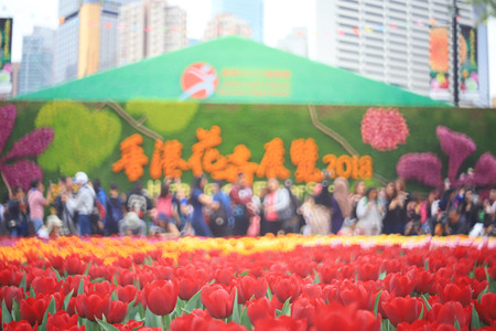 the Flower show hong kong at Victoria Park