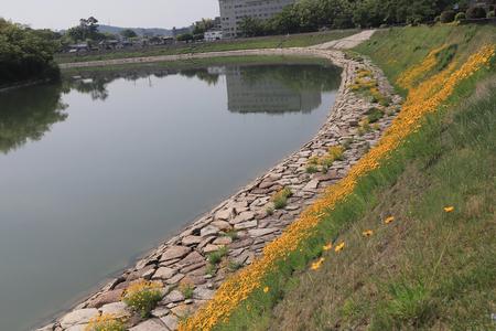 the area of asahi river at Okayama downtown Stock Photo