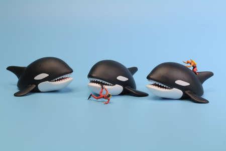 the mini diver figure attack by Whale Orca. 版權商用圖片