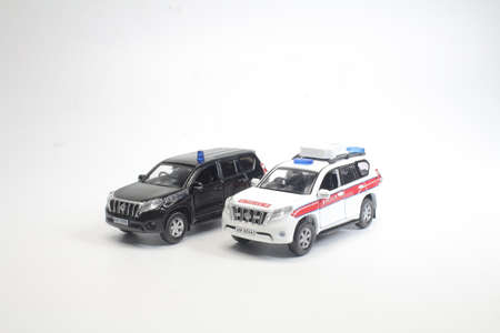 a scale police car model with figure