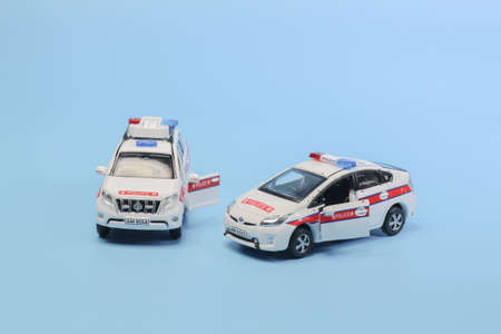 the scale police car model with figure