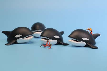 the mini diver figure attack by Whale Orca. Stock Photo