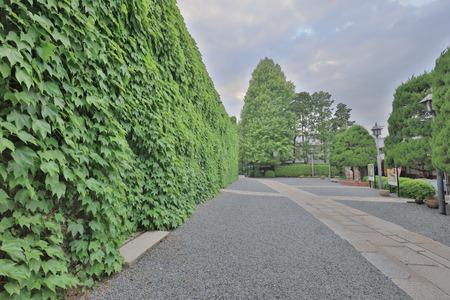 the Kurashiki Ivy Square at kurashiki