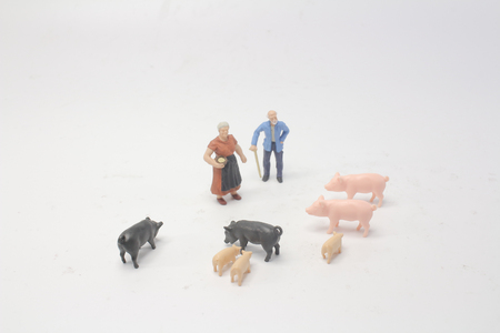 a toy farming people with the pig Stock Photo